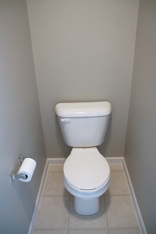 House tweaking - How to decorate a water closet ...