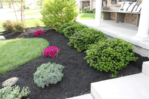 landscaping ideas with black mulch room 4 interiors