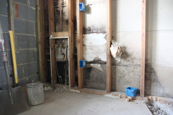 Mold In Shower Room house*tweaking