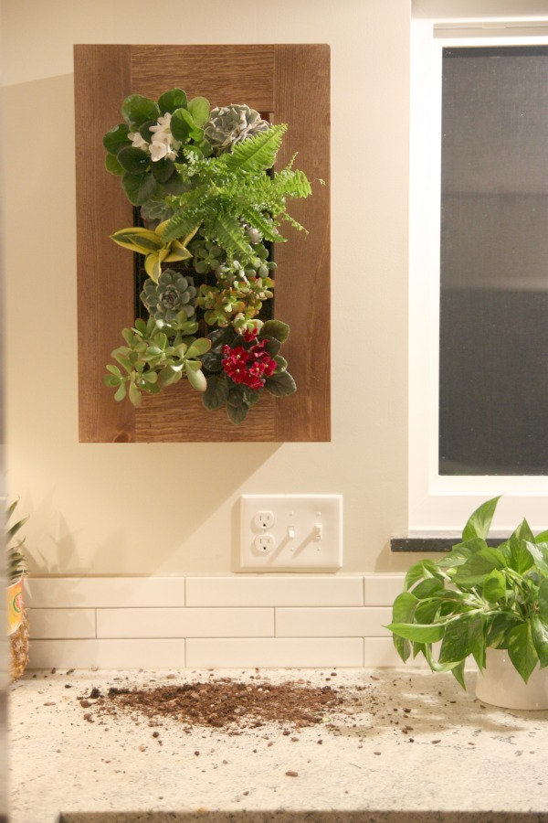 wallplanter10