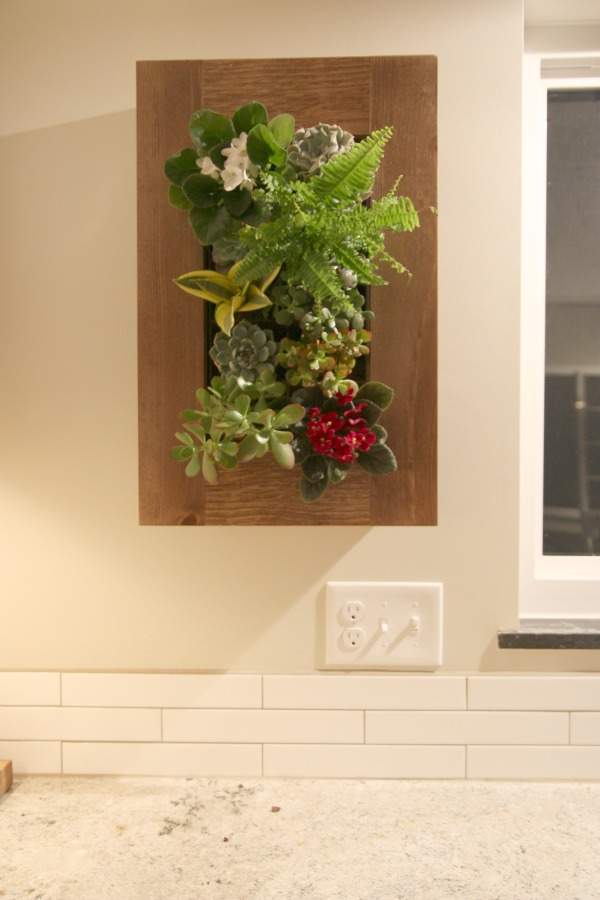 wallplanter15