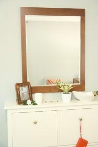br mirror 10