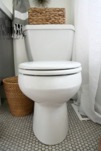 slow closing potty lid 1
