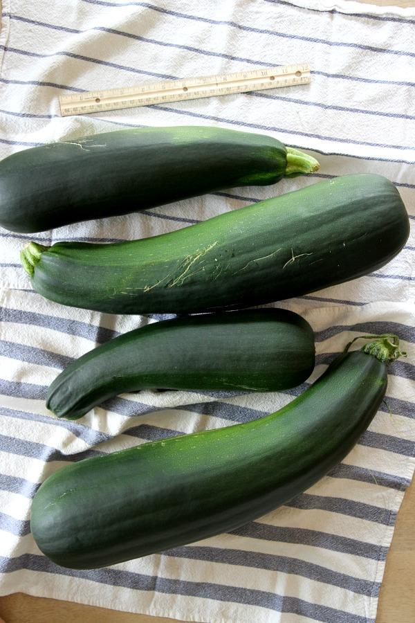 zucchini pie 1