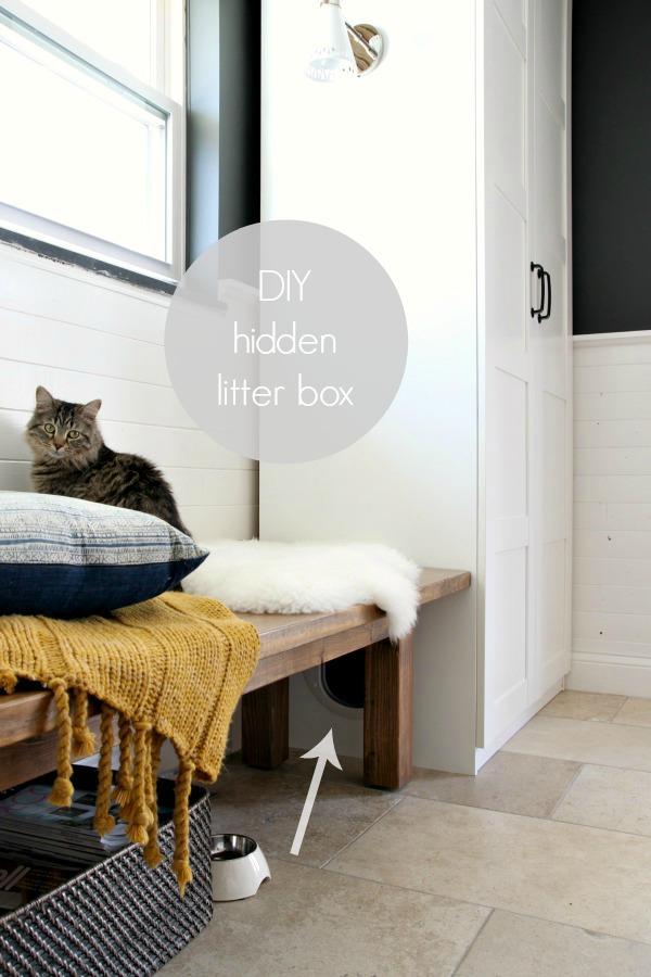 Hidden Litter Box 8