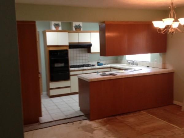 LA Ikea kitchen before 1