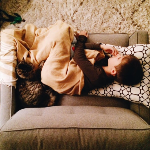 everett + cheetah