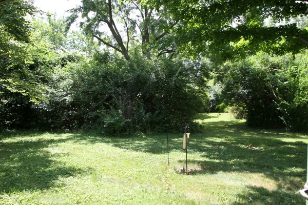 flip house backyard